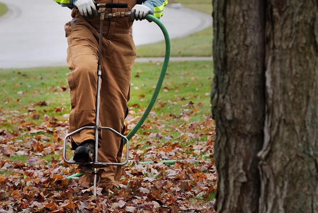 Tree fertilization service